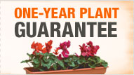  ONE YEAR PLANT GUARANTEE