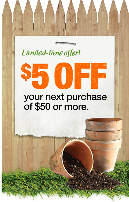 Limited-time offer! $5 OFF your next purchase of $50 or more.