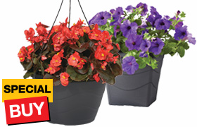 Hanging basket or planter