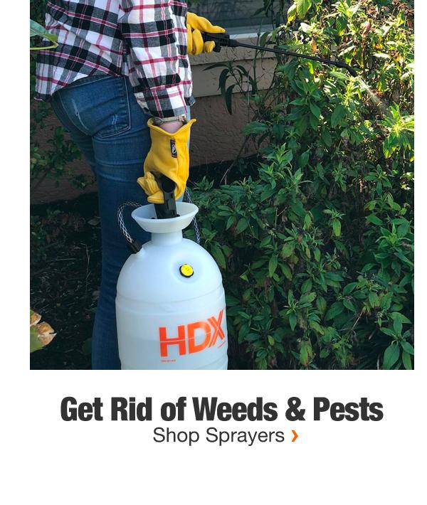 Get Rid of Weeds & Pests